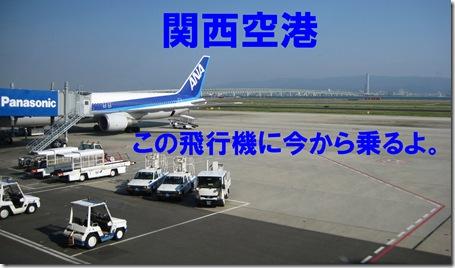 IMG_7990空港機体