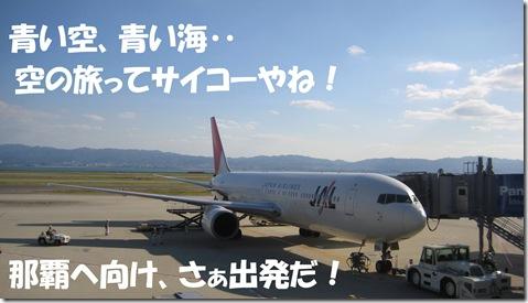 2011-11-16JAL機体