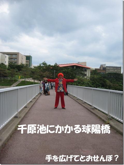 IMG_8366橋の上