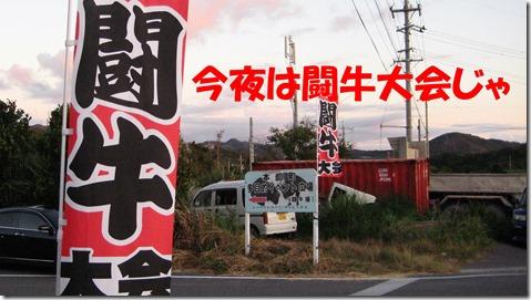 IMG_1503 闘牛のぼり