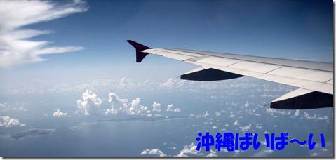 IMG_1594沖縄ばいばい
